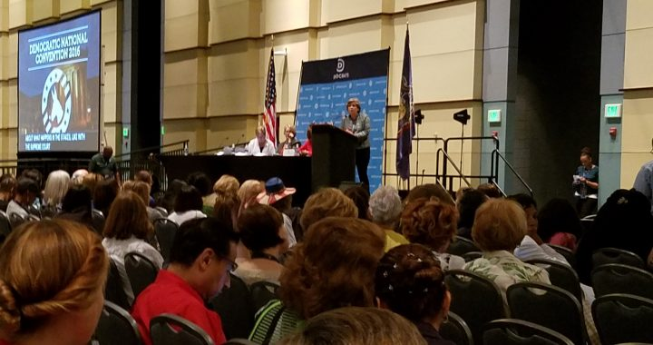 Randi Weingarten, President of the American Federation of Teachers, one of several speakers who addressed the DNC Womens caucus.